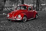 Wandbild 200x115cm selbstklebend Automobile Käfer VW