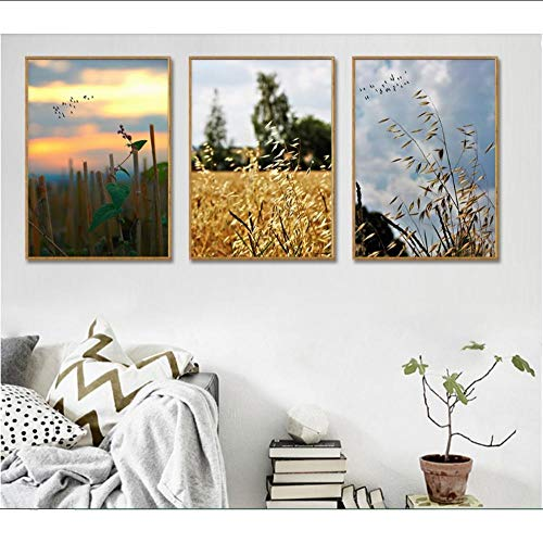 JKXIANSHENG Moderne Ästhetische Landschaft Fotografie Leinwand Kunstdruck Malerei Poster Wandbilder Für Wohnzimmer Dekoration Ungerahmt