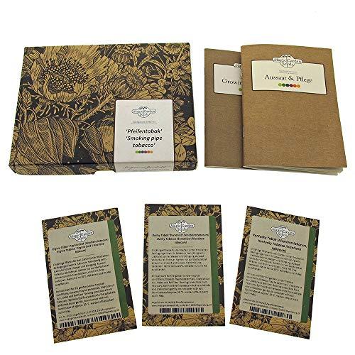 Pfeifentabak - Samen-Geschenkset mit 3 geeigneten Sorten für Pfeifentabakmischungen