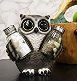 Ebros Gift Whimsical Owlet Baby Owl With Big Round Eyes Glass Salt And Pepper Shakers Holder Display Figurine Set 6' Tall Wildlife Whispering Forest Spirit Nocturnal Birds Sculpture Home Decor Accent