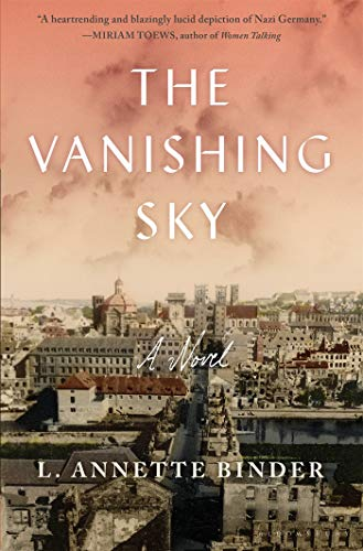 Image of The Vanishing Sky