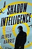 Shadow Intelligence: The Tulsa Race Massacre and Its Legacy (An Elliot Kane Thriller)