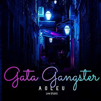 Gata Gangster