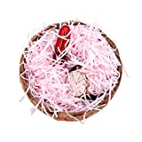 Shiwaki 100 g brandelli di Carta Rafia Multicolore e Fili di coriandoli pieghettati sminuzzati per Confezioni Regalo Fai da Te e riempimento del Cesto - Rosa