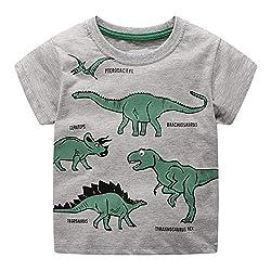 6. Warmbaby Little Boys Short Sleeve Dinosaur T-Shirt