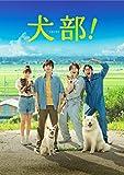 犬部! DVD(通常版)