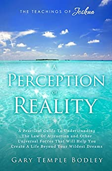 A Perception Of Reality by [Gary Bodley]