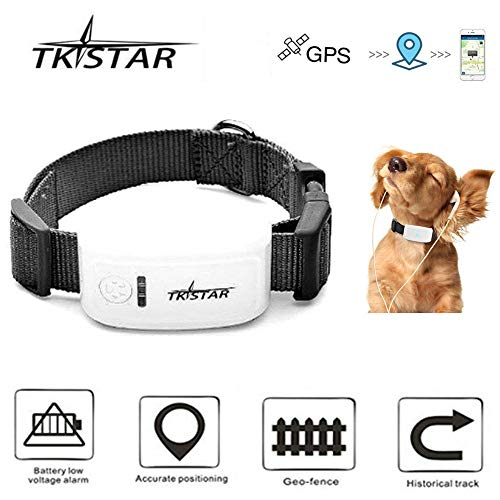 TKSTAR 4G LTE Mini GPS Tracker GPS Finder Locator for Pet Dog/Cat/Pony, Real-time Location Waterproof No Monthly Fee Tracking Device with Anti-Lost Collar Remote Voice Monitor - 4G TK909