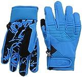 Quiksilver Snow Men's Method Glove - Blue - Large