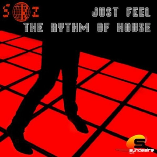 Just Feel the Rhythm of House (qwzy Remix)