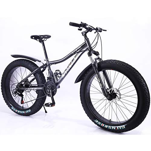 MYTNN Fatbike neues Style 26 Zoll 21 Gang Shimano Fat Tyre Mountainbike 47 cm RH Snow Bike Fat Bike (grau)