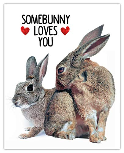 Somebunny Loves You Typography Wall Art Print: (8x10) Unframed Picture - Great Gift Idea Under $15 For a Significant Other or That Special Person in Your Life