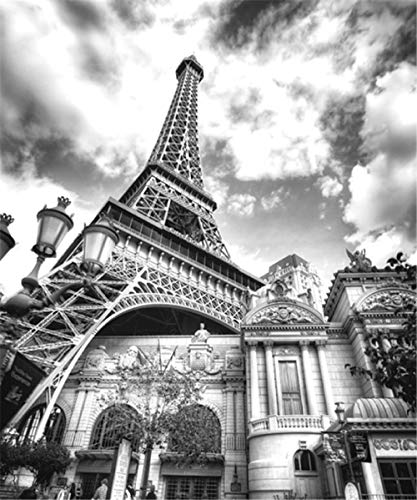 YCRY - Wallpaper Papel Black and White Paris Eiffel Tower 3D - Wall Mural - Wall Decoration - Poster Picture Photo - HD Print - Modern Decorative -Murals-120x100cm