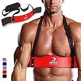 Brazo Curl Blaster por dmoose Fitness – de grosor calibre remaches de aluminio – mejorar definición y fuerza muscular en tus brazos