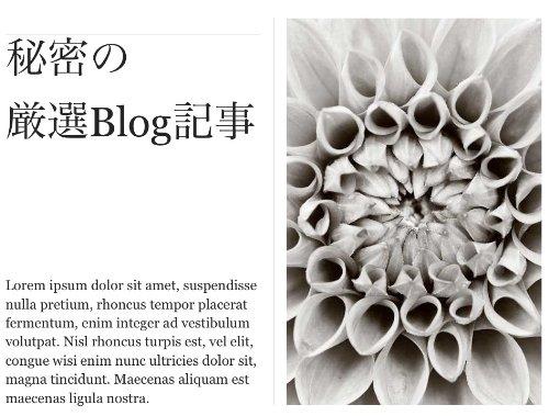 ほぼ毎週ニュースレタSeesaa Blog of Secret(秘密のブログ記事) - 高橋永次