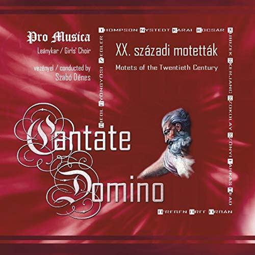 Szabó Dénes, Pro Musica
