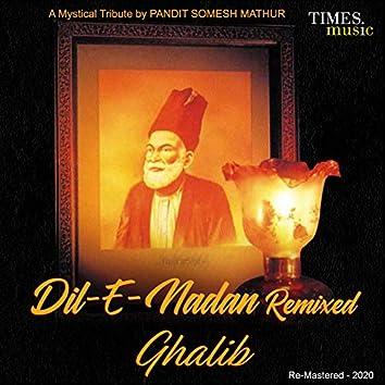 Dil-E-Nadan (Remix) - Single