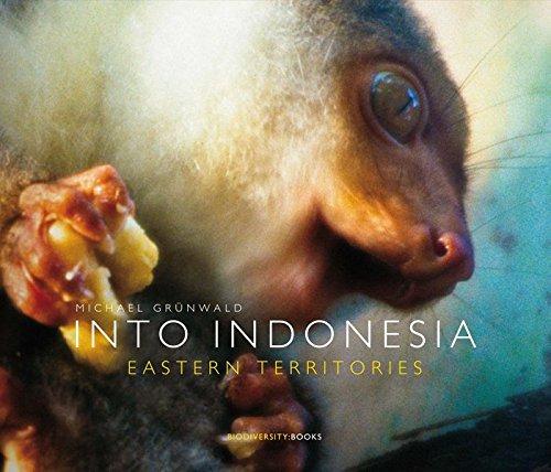 Into Indonesia: Eastern Territories