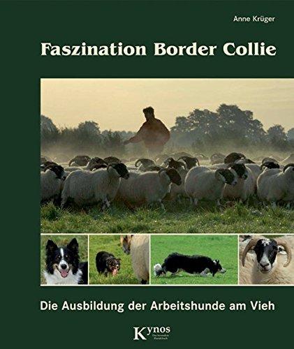 Faszination Border Collie: Die Ausbildung der Arbeitshunde am Vieh (Das besondere Hundebuch)