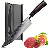 Chef Knife -Damascus 8 Inch Pro Kitchen Knife,German High Carbon Stainless Steel Knife with Ergonomic Handle