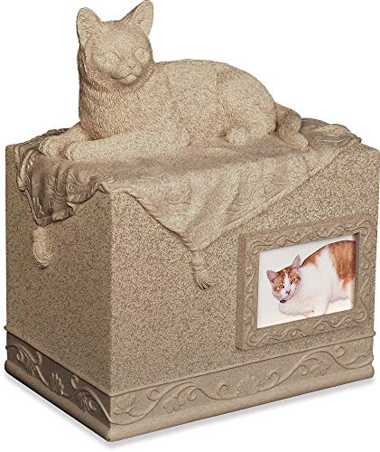 Angel Star Pet Urn for Cat, Dark Brown