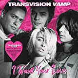 I Want Your Love (Deluxe 6cd+Dvd Book Set) - Transvision Vamp
