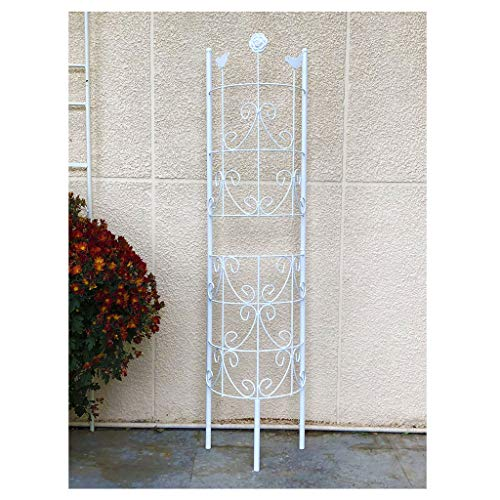 YCZM Eisen Klettergerüst Bildschirmtyp Pflanze Klettergerüst Geeignet für Clematis, Rosen und andere Kletterpflanzen (weiß)
