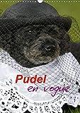 Pudel en vogue (Wandkalender 2020 DIN A3 hoch): Zwei süße Pudel als Models (Monatskalender, 14 Seiten )