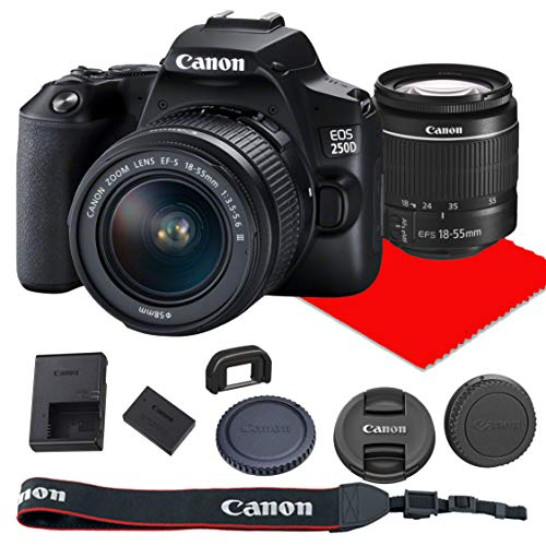 Canon EOS 250D / Rebel SL3 DSLR Camera ...