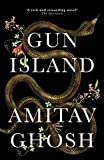 Gun Island: A spellbinding, globe-trotting novel by the bestselling author of the Ibis trilogy (English Edition)