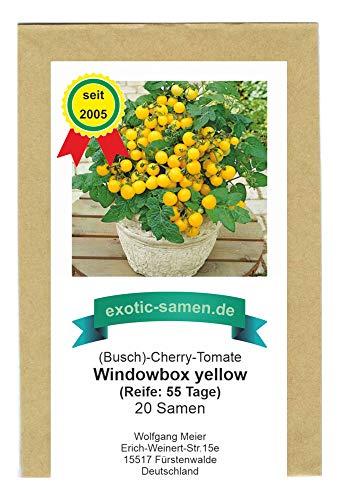 Balkontomate - Strauchtomate - gelbe Cherry-Tomate - Windowbox yellow - 20 Samen