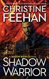 Shadow Warrior (A Shadow Riders Novel Book 4) (English Edition)