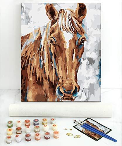 Gronda Pintura por números para adultos y niños sobre lienzo Caballo marrón 50,8 x 40,6 cm (sin marco), color por números con pigmentos acrílicos y pinceles