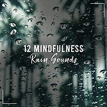 12 White Noise & Mindfulness Rain Sounds
