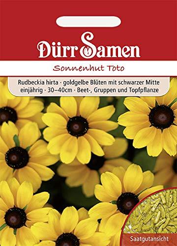 Dürr Samen - Sonnenhut 'Toto', goldgelbe Blüten, einjährig, 30-40cm