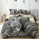 WINCAN Juego de Bettbezug de decoración 200x200cm American Staffordshire Terrier Bulldog Veterinary Rescue Dog Sofá Cuero Mascota Pet Spca Dog Juegos de Bettwäsche de 3 piezas con 2 Kissenbezügen para
