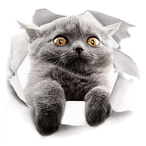 psy Pegatinas 3D para gatos – Paquete de 2 pegatinas para pared, nevera, inodoro y más