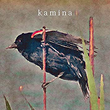 Untitled Kamina Tape