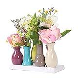 Home&Decorations VAS055 Floreros de cerámica – Set de floreros Decorativos para Bodas, Regalos, buffets, cocinas, Living 30 x 6 cm (1 Set de 7 jarrones Multicolor)