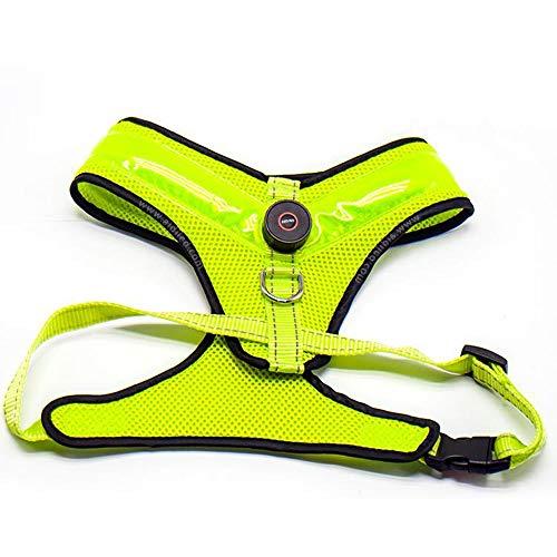 ZDJR Kein Pull Dog Westentopf mit LED-Licht für Outdoor, Adjustable Belt Padded, Soft Mesh Vest, mit Straps & Buckles, Macht Ihren Hund sichtbar,Grün,M