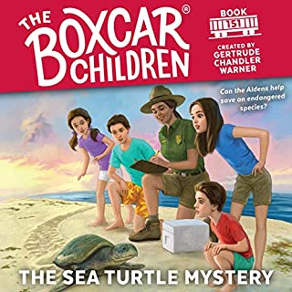 The Sea Turtle Mystery cover art