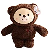 Rainbow Ruby Teddy Bear Plush Toy Soft Stuffed Animal Small Plushies Animal Birthday Gift for Baby Toddlers Kids 38cm Bear