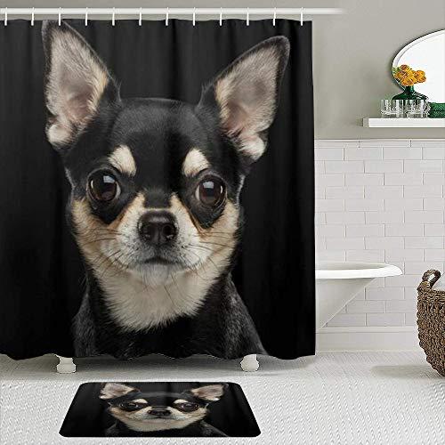 vhg8dweh Juegos de Cortinas de baño con alfombras Antideslizantes, Chihuahua Perro Lindo Animal de compañía,con 12 Ganchos