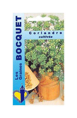 Les Graines Bocquet - Graines De Coriandre Cultivée - Graines Potagères À Semer - Sachet De 5Grammes