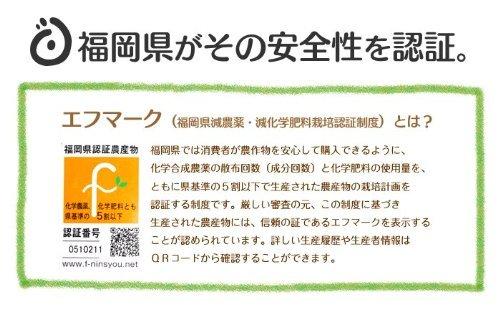 おどろきっちん『福岡県産特別栽培米ひのひかり』