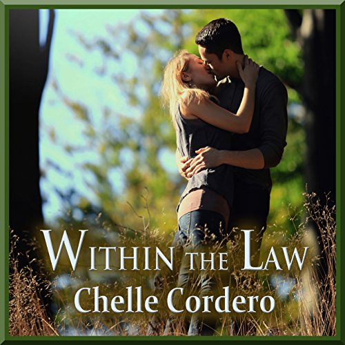 Within the Law audiobook cover art
