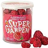 Super Garden Lamponi liofilizzati - Spuntino salutare - 100% Puro e naturale - Adatto ai vegani - Senza zuccheri aggiunti, senza additivi artificiali e senza conservanti - Senza glutine - Senza OGM