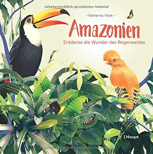 Amazonien: Entdecke die Wunder des Regenwaldes