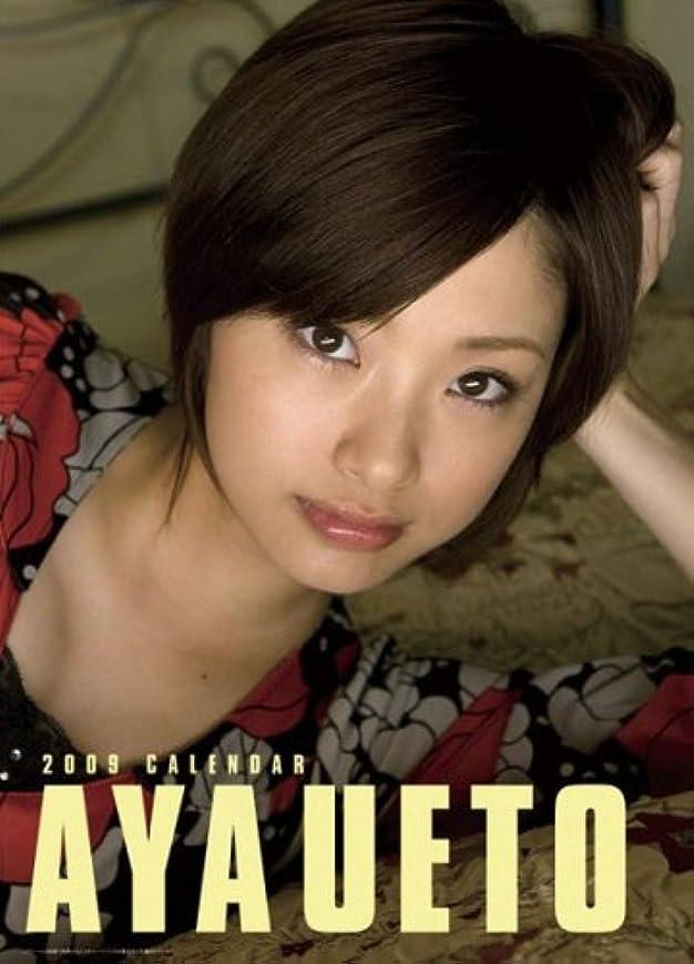 娯楽インドフォーマル上戸彩 2009年カレンダー