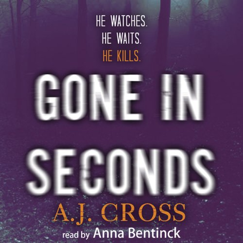 Gone in Seconds audiobook cover art
